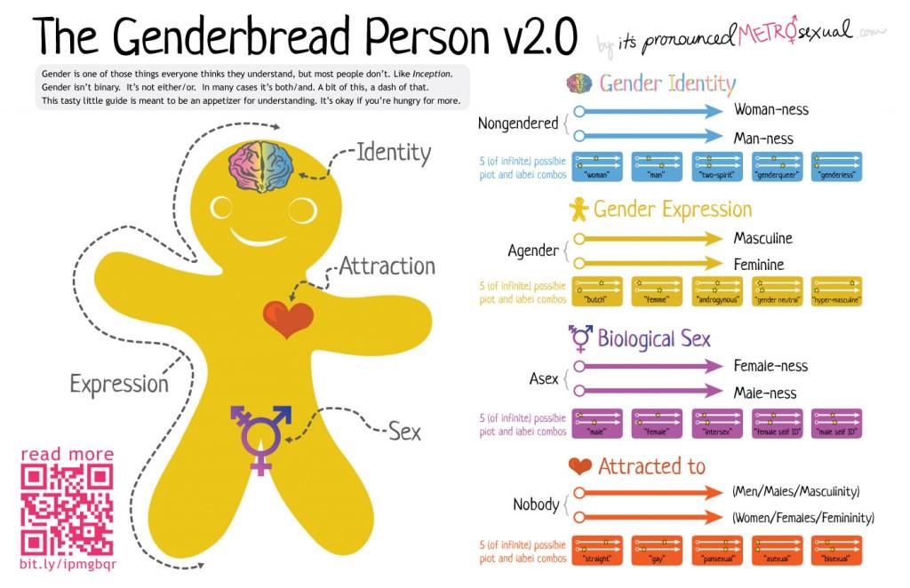genderbread-21